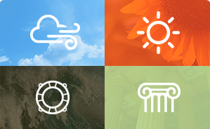 Small Business Survey Icons